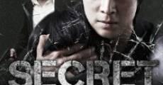 Ver película Secret Reunion