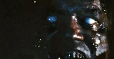 Ver película Secretos de la Cripta