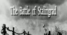 Secretos de Stalingrado (2010) stream