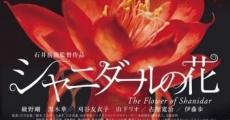 Filme completo Shanidâru no hana