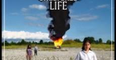 Película Sheltered Life