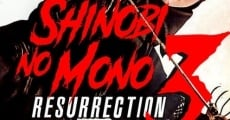 Ver película Shinobi no Mono 3: Resurrection