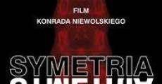 Ver película Simetría