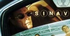 Ver película Sinav