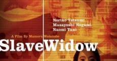 Ver película Slave Window