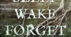 Sleep, Wake, Forget (2015)