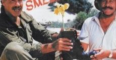 Ver película Smell and Smile