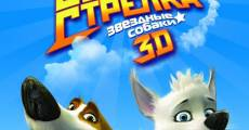 Ver película Space Dogs 3D