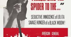 Ver película Spider Baby
