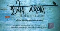 Película Spring in the Colony