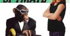 Un espía muy mono