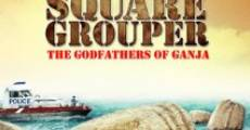 Square Grouper (2011)
