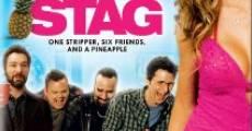 Ver película Stag