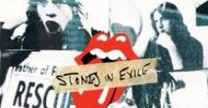 Stones in Exile film complet