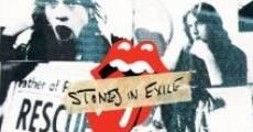 Ver película Stones in Exile