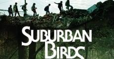 Suburban Birds (2018) stream