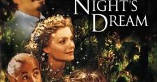 Ver película Sueño de una noche de verano