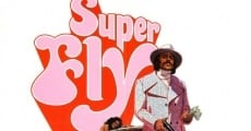 Ver película Super Fly