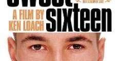 Ver película Sweet Sixteen