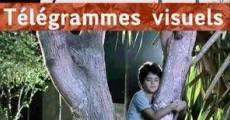 Ver película Telegramas visuales