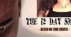 The 12 Day Smile (2011) stream