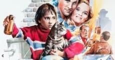 Ver película The Alley Cat