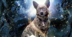 Película The Amazing Wizard of Paws
