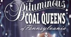The Bituminous Coal Queens of Pennsylvania (2005) stream