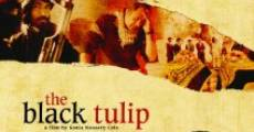 Película The Black Tulip