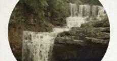 The Den (2014) stream