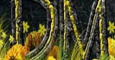 Película The Divine Marigolds
