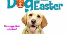 Ver película The Dog Who Saved Easter