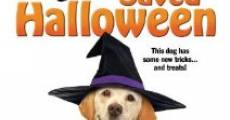 Filme completo The Dog Who Saved Halloween