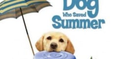 Filme completo The Dog Who Saved Summer