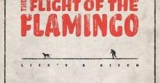 Película The Flight of the Flamingo