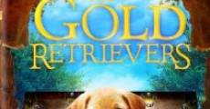 Ver película The Gold Retrievers