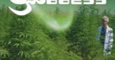Película The Green Goddess