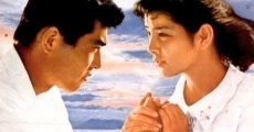 Película The Heart of Hiroshima