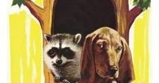 Ver película El sabueso que se creía un mapache