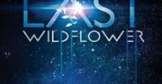 The Last Wildflower (2014) stream