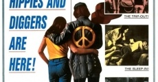 Película The Love-Ins