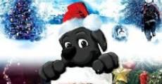 The Magic of Christmas II (2010) stream