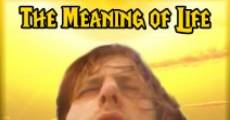 The Meaning of Life (2012)