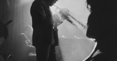 The Miles Davis Documentary (2014)