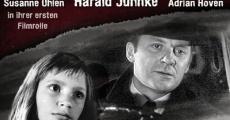 Ver película The Murderer with the Silk Scarf