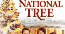 Filme completo The National Tree