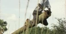 The New Sudan (2010) stream