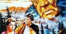 Ver película The Perjured Farmer