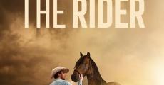 Ver película The Rider