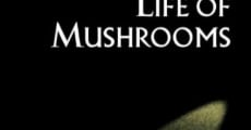 The Secret Life of Mushrooms (2010)